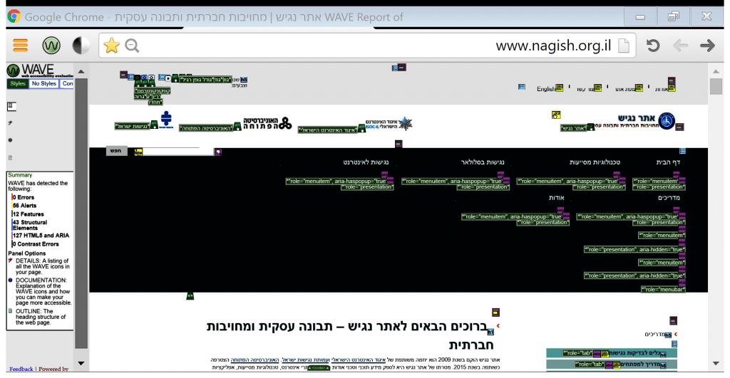 דוגמה לעמוד תוצאות לאחר סריקת דף הבית של אתר נגיש עם WaveToolbar